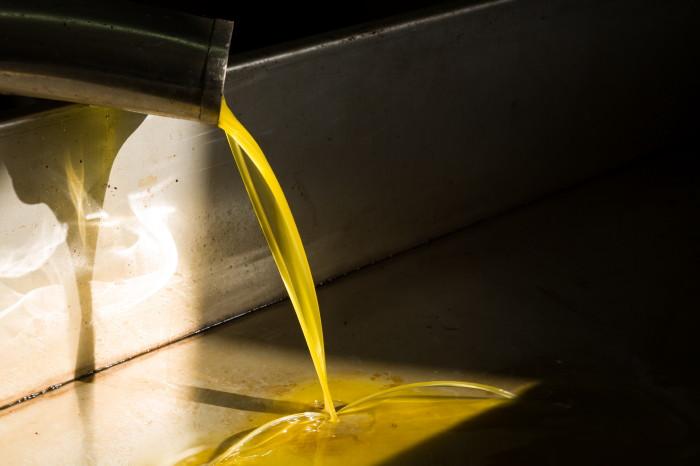 a-olivenoel-kondyli0001