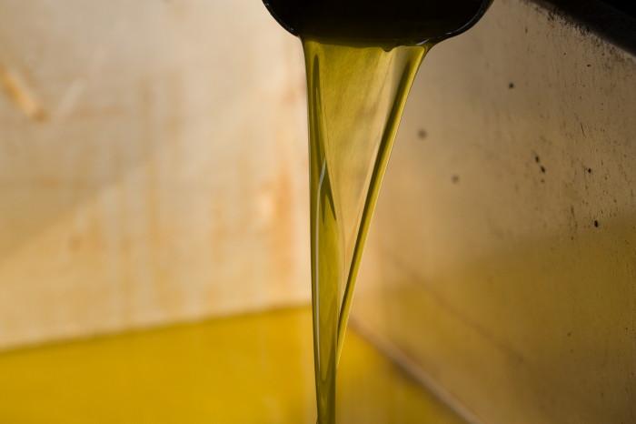 b-olivenoel-kondyli0003