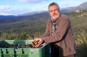 Heinz Diehl bei der Olivenernte